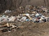 В Волгограде обнаружена несанкционированная свалка