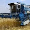 В Волгоградской области собран рекордный урожай