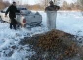 Сотрудники парка Донской организовали подкормку диких животных