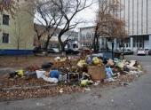 В Краснооктябрьском районе Волгограда с лета не могут ликвидировать свалку рядом с жилыми домами