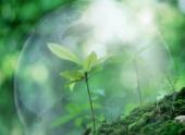 Экологи Волгограда просят сохранить департамент по охране окружающей среды