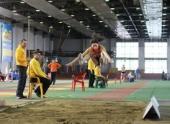 В Волгограде пройдут соревнования на Кубок губернатора