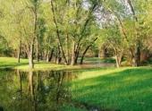 «Гринпис России» бьет тревогу: Природный парк «Волго-Ахтубинская пойма» может лишиться 17 000 га уникальных земель из-за ЧМ-2018