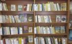 Жители Волгограда протестуют против закрытия библиотек