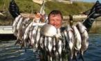 В Волгограде 13 сентября состоятся соревнования по подводной охоте