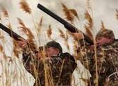 В Волгограде и регионе сезон охоты откроется 16 августа