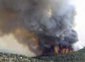 В Волгоградской области аномальная жара стала причиной ландшафтных пожаров