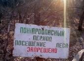 В Волгоградской области посещение лесов остается под запретом