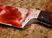 В Волгоградской области семейный скандал матери и сына закончился убийством