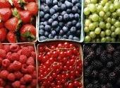 Волгоградская область занимает второе место по производству плодовоягодной продукции