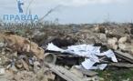 За мусорную свалку чиновника оштрафуют на 250 тысяч рублей