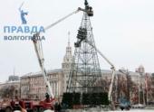 В Волгограде новогоднюю елку установят 15-го числа