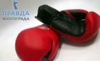 Перчатки боксерские — Спорт Континент
