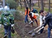 В Камышинской администрации Волгограда прошел брифинг по озеленению