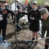 Жители Волгограда приняли участие в акции «Дерево Победы»