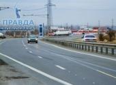 В Волгограде 30-летние ели помешали расширению дороги на аэропорт