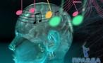 Эффект Моцарта в медицине