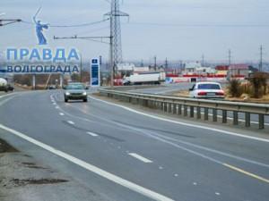В Волгограде 30-летние ели